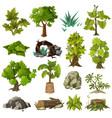 trees plants landscape gardening elements vector image vector image
