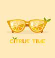 citrus orange glasses hello summer time vector image vector image