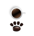 cup of coffee and beans on white vector image