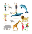 flat icons set of dolphinarium circus and vector image
