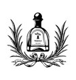 alcohol bottle tequilla drink drinking cocktail vector image