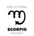 astrology sign of zodiac scorpio the scorpion vector image vector image
