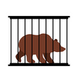 Bear in cage Animal in Zoo behind bars Big beast vector image vector image