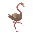 cartoon ostrich a cute vector image