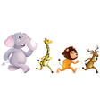 Four wild animals running vector image vector image