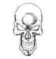 Skull 0026 vector image vector image