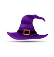 violet witch and wizards hat with belt halloween vector image vector image