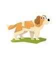 St Bernard Rescue Dog vector image