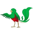 cartoon smiling quetzal vector image vector image