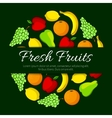 Fresh fruits round organic fruit poster vector image vector image