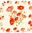 Poppy flower pattern vector image vector image