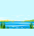 river landscape with lily and cane vector image