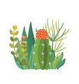 tropical house plants and cactus composition vector image vector image