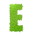 Uppecase letter E consisting of green leaves vector image vector image