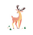 deer hand drawn wild animal vector image