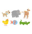 different kinds funny cute domestic and wild vector image vector image