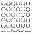 laurel wreath collection vector image vector image