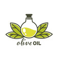 olive oil natural product in glass bottle vector image