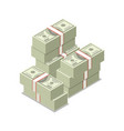 packing in bundles banknotes isometric 3d icon vector image