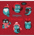Season Greetings card with owls vector image vector image