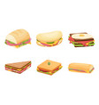 set delicious juicy sandwiches filled vector image vector image