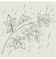 Maple tree branch in the rain vector image