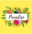 summer design for season postcard vector image vector image