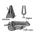 vintage engraving musical instruments vector image vector image