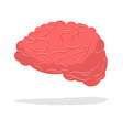 Human brain isolated Brain on white background vector image vector image