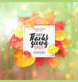 thanksgiving sale letter with yellow leaves fall vector image vector image