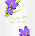 card with blue bell flowers and space for your vector image vector image