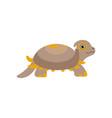 cute prehistoric turtle funny baby amphibian vector image