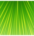 green magic abstract background vector image