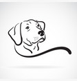 labrador dog head design on white background vector image vector image