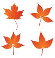 orange leaves vector image