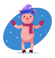 pink piggy looking at the falling snow vector image vector image