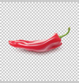 red realistic pepper vector image