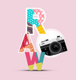 retro design with raw symbol and vintage camera vector image vector image
