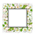 square frame of cherry blossom branches vector image