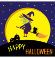 Flying cartoon witch and cat big moon Halloween vector image