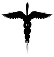 caduceus medical symbol isolated vector image vector image