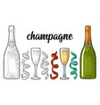 champagne calligraphic handwriting lettering vector image vector image