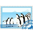 Postage stamp with penguins vector | Price: 3 Credits (USD $3)