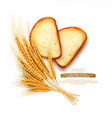 slices sliced bread loaf lying isolation vector image