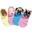 swaddled babies clipart