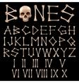 Bones Alphabet vector image vector image