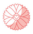 cute flower with heart isolated icon vector image