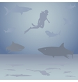 Diver among sharks vector image vector image