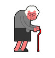 evil grandmother old hag bad grandma old lady vector image vector image