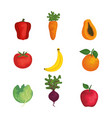 group of fruits and vegetables vector image